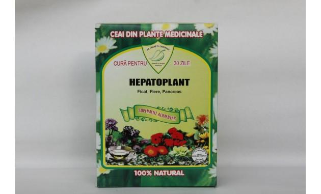 Ceai pentru afecţiuni hepato-biliare Ficat, Pancreas (270g)